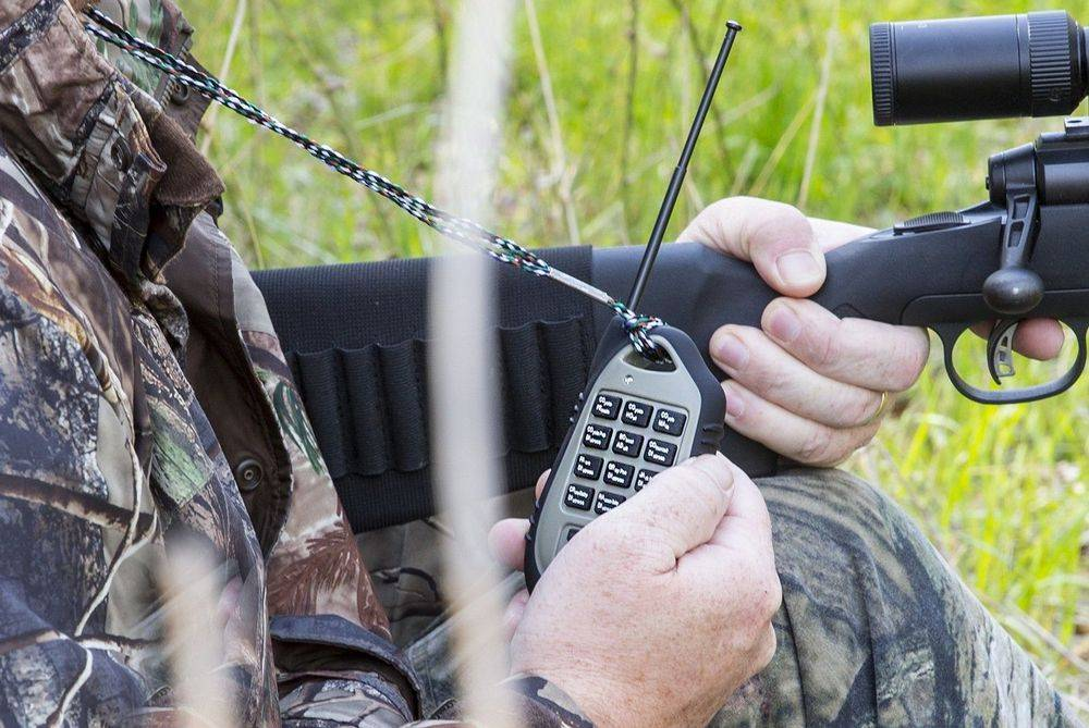 Best Electronic Coyote Calls