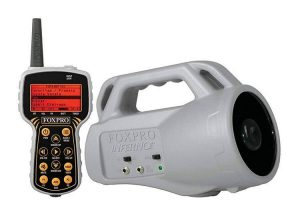 FOXPRO INF1