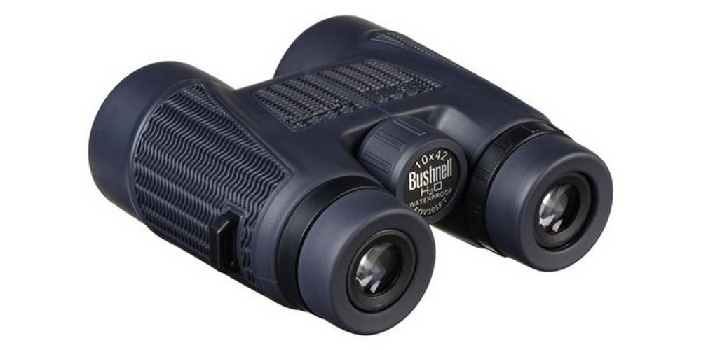 Bushnell BN150142 H2O 10x42 has the adjustable eyecups