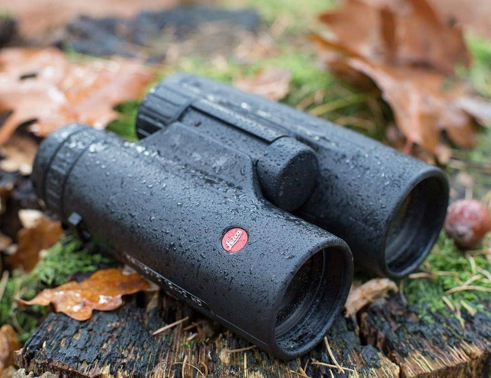 What to look out for when selecting binoculars for birding